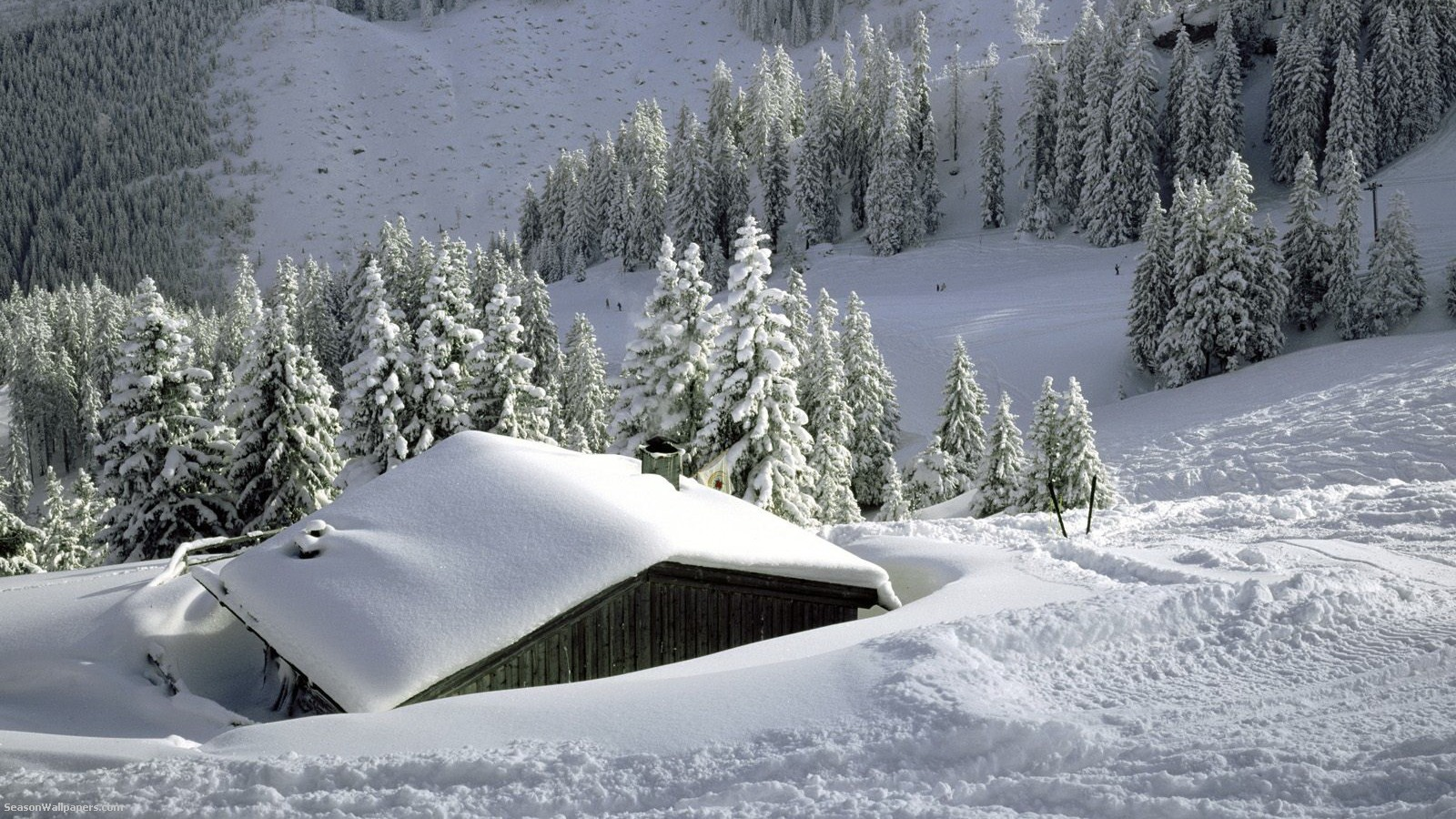 house-covered-with-snow-in-the-mountains-in-the-forest_1600x900